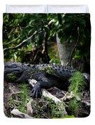 Sleeping Alligator Duvet Cover