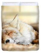 Sleeping Beauty -red Fox In Rest Duvet Cover