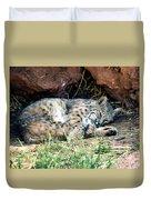Sleeping Bobcat Duvet Cover