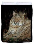 Sleepy Bobcat Duvet Cover
