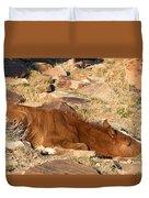 Sleeping Colt Duvet Cover