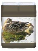 Sleeping Ducks. Duvet Cover