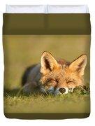 Sleeping Fox Kit Duvet Cover
