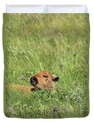 Sleepy Calf Duvet Cover