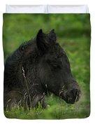 Sleepy Dartmoor Foal Duvet Cover