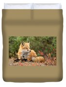 Sleepy Fox Duvet Cover