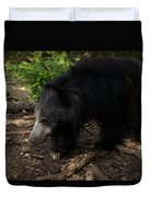 Sloth Bears Melursus Ursinusat Duvet Cover