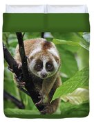 Slow Loris Nycticebus Coucang, Northern Duvet Cover