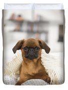 Small Brabant Griffon, Petit Brabancon, Dog  Duvet Cover