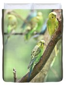 Small Budgie Birds With Beautiful Colored Feathers Duvet Cover
