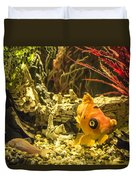 Small Fish In An Aquarium Duvet Cover