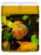 Small Mushroom In Autumn Duvet Cover