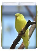 Small Yellow Budgie Parakeet In The Wild Duvet Cover