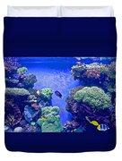 Smaller Fish In Monterey Aquarium-california  Duvet Cover