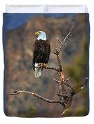 Smith Rock Bald Eagle Duvet Cover