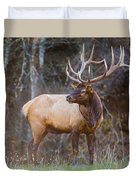 Smoky Mountain Elk II - North Carolina's Cataloochee Valley Wildlife Duvet Cover