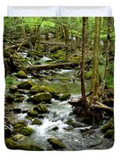 Smoky Mountain Stream 2 Duvet Cover
