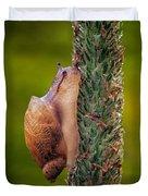 Snail Climbing The Tall Grass Duvet Cover