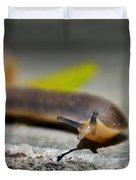 Snail Searching For Shell Duvet Cover