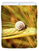 Snails On Wheat Duvet Cover