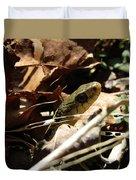 Snake In Nature Duvet Cover