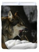 Snarling Wolf Duvet Cover