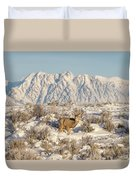 Snow-buck In Wyoming Duvet Cover