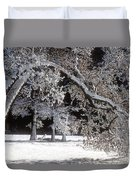 Snow Covered Black Oak Yosemite National Park Duvet Cover