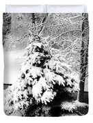 Snow Covered Trees Duvet Cover by Kathleen Struckle