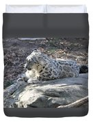Snow-leopard Duvet Cover