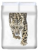 Snow Leopard On The Prowl X Duvet Cover