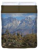 Snow On Four Peaks Arizona No Snow On Saguaros Duvet Cover
