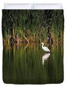 Snowy Egret In Marsh Reinterpreted Duvet Cover