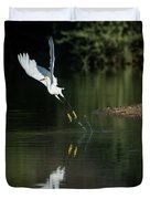Snowy Egrets 080917-4290-1 Duvet Cover