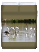 Snowy Egrets On Calm Water Duvet Cover
