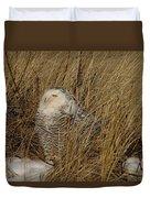 Snowy Owl In Grass Duvet Cover