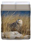 Snowy Owls On The Beach Duvet Cover