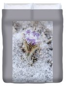 Snowy Pasqueflower Morning Duvet Cover