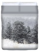 Snowy Pines In The Pike National Forest Duvet Cover