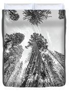 Snowy Sequoias At Calaveras Big Tree State Park Black And White 6 Duvet Cover