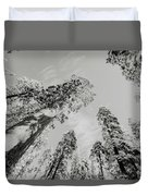 Snowy Sequoias At Calaveras Big Tree State Park Black And White 7 Duvet Cover