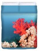 Soft Coral  Duvet Cover