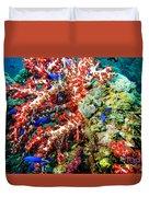 Soft Coral In Truk Duvet Cover