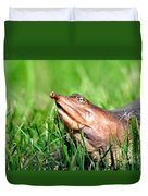 Soft Shell Turtle  Duvet Cover
