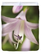 Softened Hosta Bloom Nature Photograph  Duvet Cover