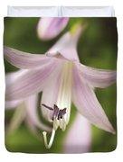 Softened Hosta Bloom Nature Photograph  Duvet Cover