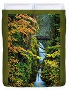 Sol Duc Falls In Autumn Duvet Cover