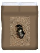 Solitary Bee  Andrena Cinearia Duvet Cover