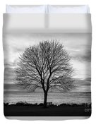 Solitude 3, New Castle Sunrise Duvet Cover
