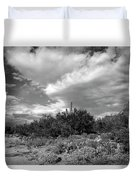 Sonoran Afternoon H10 Duvet Cover